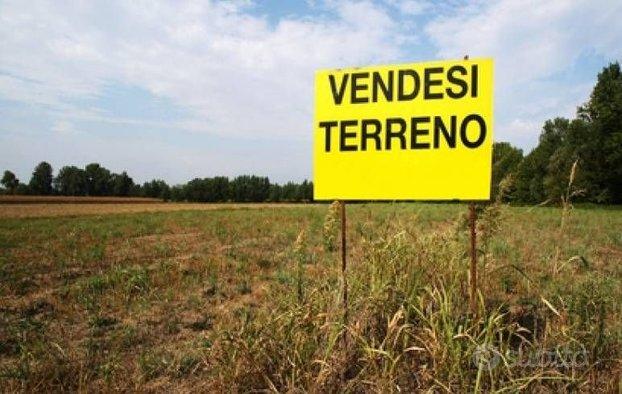 Terreno agricolo/boschivo PATRICA