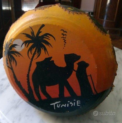 Bongo - tamburo - Djambè Tunisia
