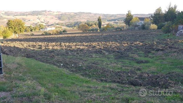 Terreno Agricolo - Campodipietra