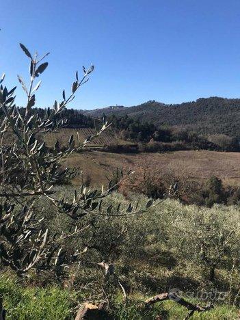 COLLAZZONE - Gaglietole - Villa