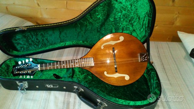 Mandolino bluegrass