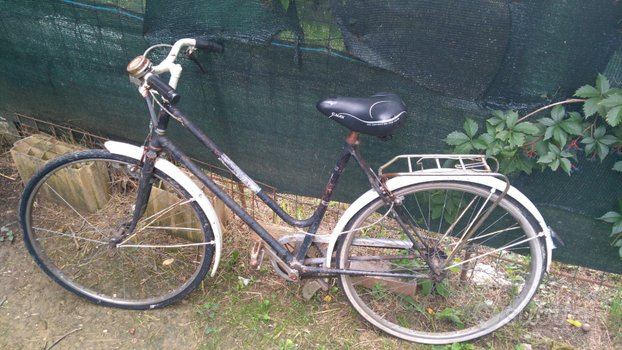 Bicicletta unisex mondial