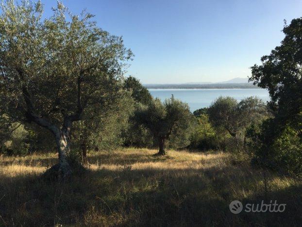 Terreno agricolo Uliveto con vista panoramica