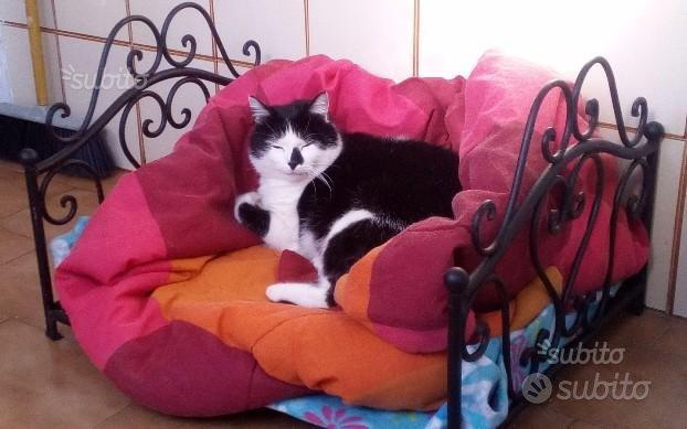 Cuccia letto per cani e gatti di medie dimensioni