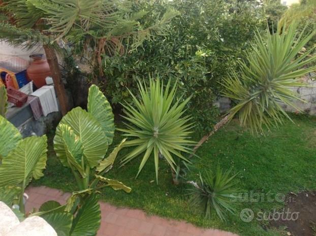Giarre, casa singola con terreno e cortile