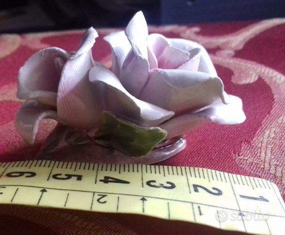 2 rose di Capodimonte 2