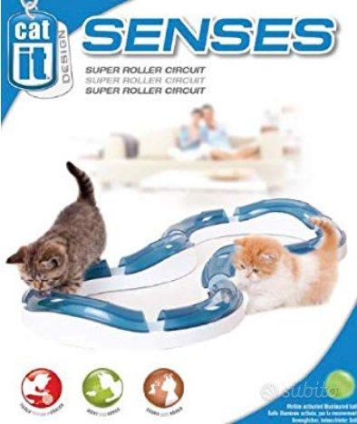 Circuito gioco per gatti