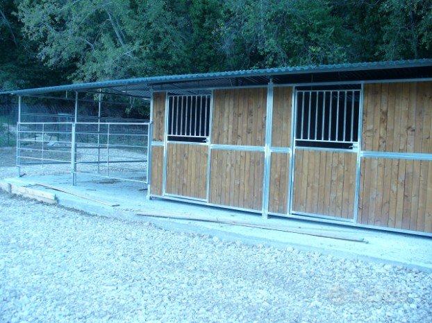 8box per cavalli