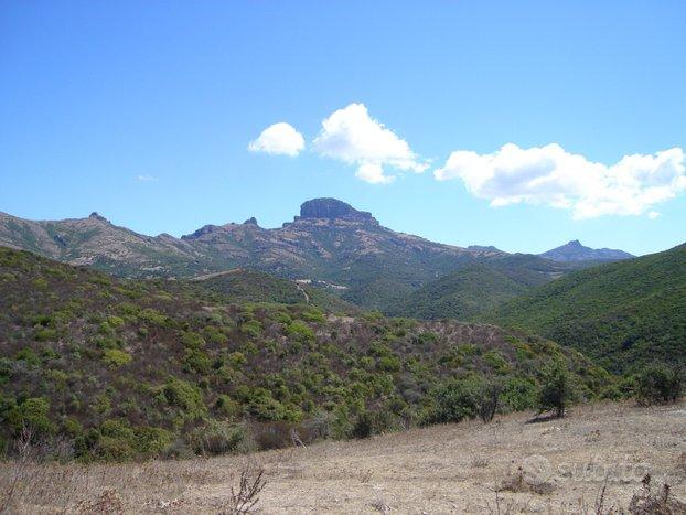 Terreno agricolo in Sardegna