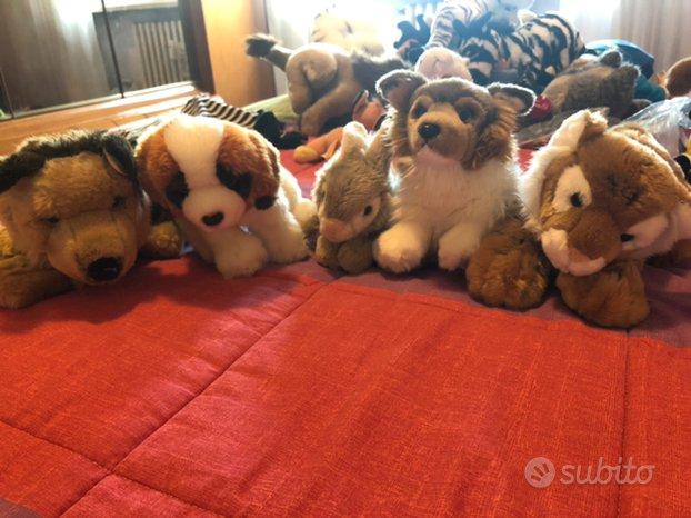 Peluches cani, leoni, tigri