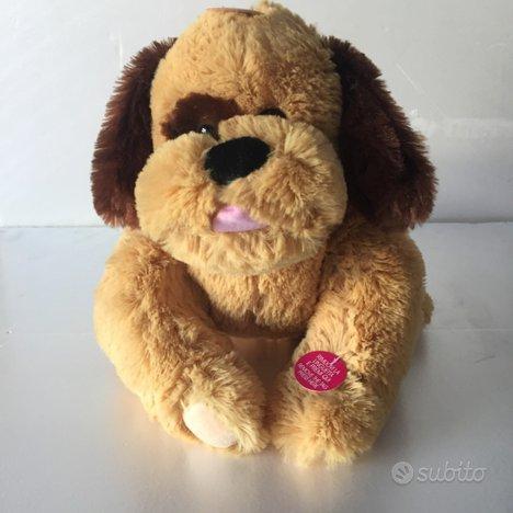 Cucciolo Buddy