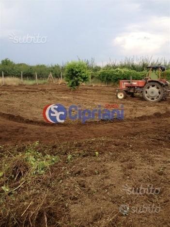 Terreno agricolo mq 1000 zona casacelle