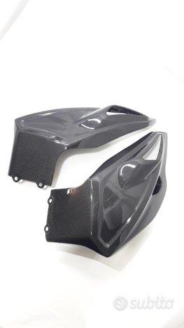 Puntale paramotore carbonio bmw s 1000xr