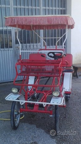 Bici ciclocarrozzella