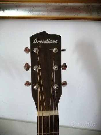 Chitarra acustica amplificata