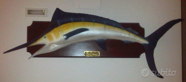Trofeo marlin