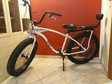 Fat bike 2 posti