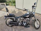 Harley-Davidson Softail Fat Boy - 2004 + Accessori