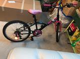 Bicicletta bimba 20 pollici