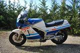 La regina delle due tempi Suzuki RG 500 GAMMA