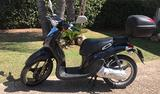 Motorino 50