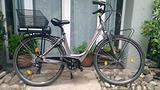 E-bike Olympia Energy