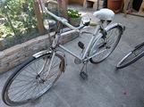 Bicicletta Trarovi da viaggio