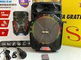 Cassa Acustica Bluetooth per Karaoke 1000W