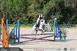 Pony altezza da salto per brevetto