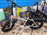 Bici elettrica Fatbike Lion sport