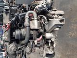 059 motore bmw 204d4 163 cv