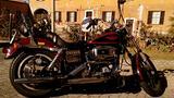 Harley Davidson Low rider 82 Schovelhead