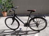 Bicicletta Lombardo Taranto 400