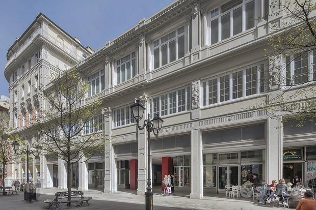 Locale commerciale - Trieste