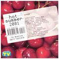 Collezione in CD di Hot Summer 2001