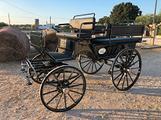 Carrozza break wagonette