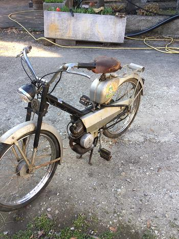Motorino 50 cc