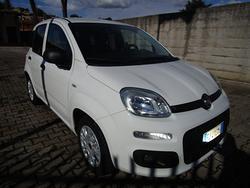 FIAT New Panda 1.2 GPL Pop Van 2 posti