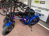 Bici elettrica Fatbike Reset