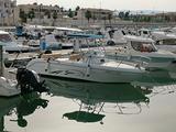 Barca Saver 720 Walk Around WA