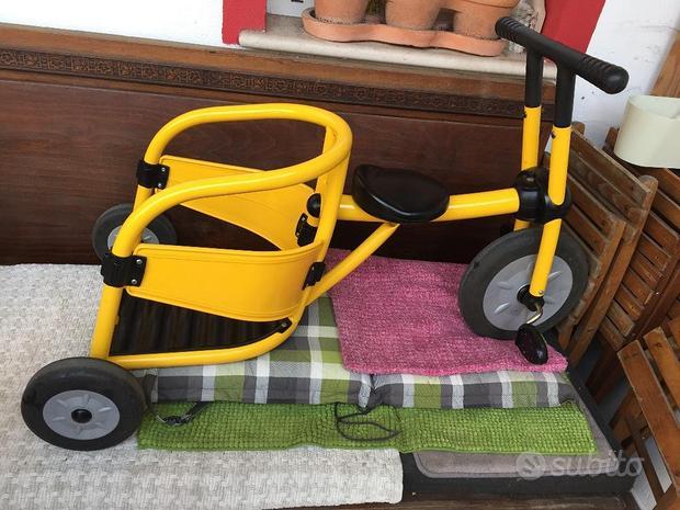 Triciclo biga