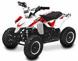 Miniquad Minisharper 50 cc ruota 6