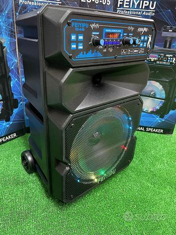 Cassa acustica amplificata karaoke bluetooth