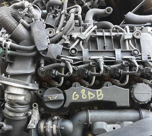Motore f. focus sigla g8db