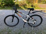 "Mountain bike Olmo Oasi misura 24"""