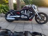 Harley-Davidson muscle special