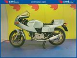 DUCATI Pantah 500 Finanziabile - Azzurro - 16278