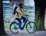 Bici elettriche GIANT Dailytur+2 - 2019 Dicembre
