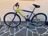 Bici mountain bike da ragazzo