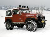 Accessori Ricambi Jeep Renegade CJ7 76-86 Isuzu D
